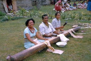 Beating paper mulberry for tapa in Tonga. Photograph by Adrienne L. Kaeppler.